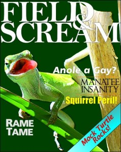 Picture of cover of 'Field & Scream' magazine